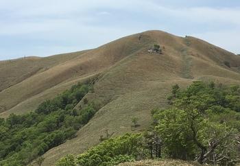 稜線から見る綱付森.JPG